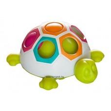 Első színegyeztető teknősöm